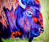 Purple Buffalo